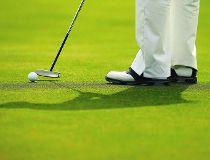 Golf green filer