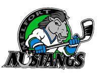 Mustangs Logo
