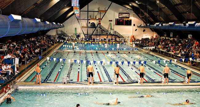 Bac 14th At Swim International Brantford Expositor