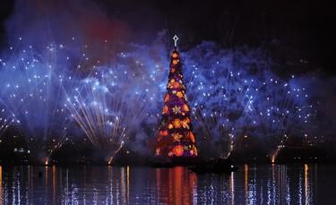 Fireworks light up the sky during the inauguration of a giant christmas tree at the Rodrigo de Freitas lagoon in Rio de Janeiro, Brazil on December 1, 2012. AFP PHOTO / ANTONIO SCORZA
