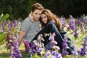 Kristen Stewart and Robert Pattinson in The Twilight Saga: Breaking Dawn Part 2.