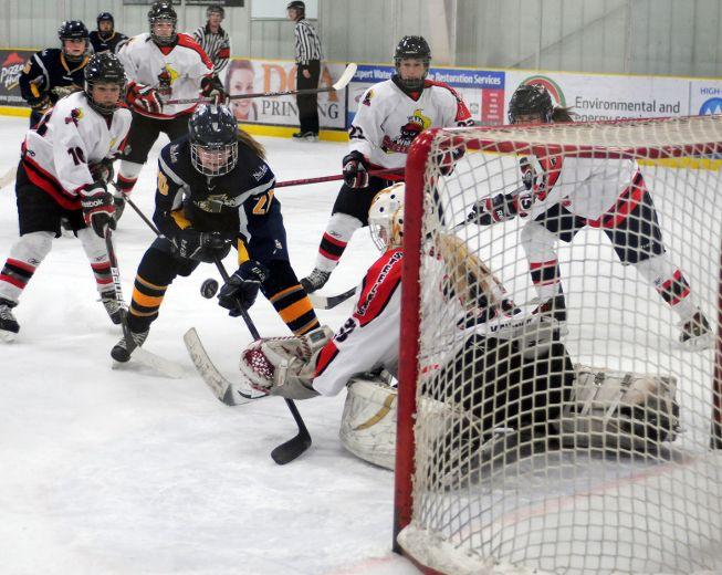 Alberta major midget hockey league