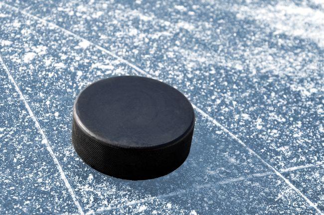 Image of a hockey puck. (Fotolia.com)