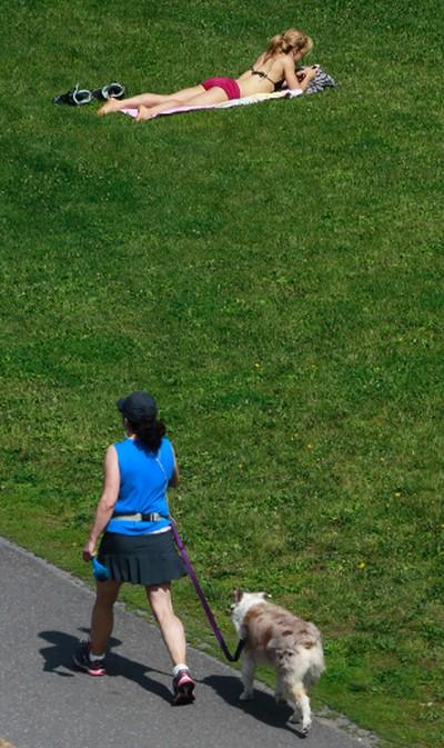 Ottawa residence enjoying the sunshine in a city park on Friday, July 12, 2013. The City's draft 2014 budget calls for $11.2M in spending on suburban parks.  Tony Caldwell/Ottawa Sun/QMI Agency