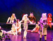 The Tony Award-winning musical Cats. Daniele Alcinii/Sherwood Park News