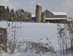 File Photo of a Brantford farm (BRIAN THOMPSON/QMI Agency)