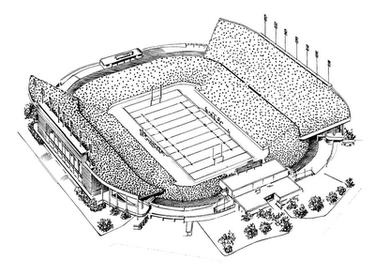 RICE STADIUM Super Bowl VIII (1974) Houston, Texas (Photo: HeritageSportsArt.com)