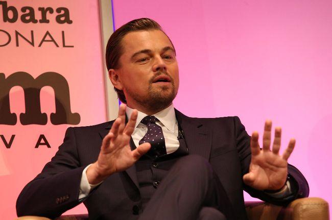 Leonardo DiCaprio (WENN.COM photo)