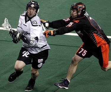 The Edmonton Rush's Mark Matthews (42) battles the Buffalo Bandits' Jay Thorimbert (75) during first half National Lacrosse League action at Rexall Place, in Edmonton Alta., on Friday March 21, 2014. David Bloom/Edmonton Sun/QMI Agency