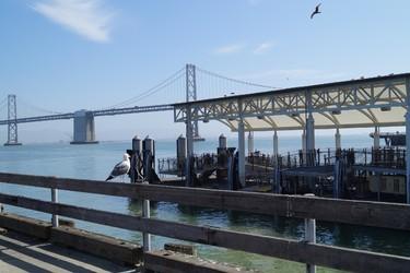 The pier in San Franciso. (HANDOUT/Sarah Zaharia)
