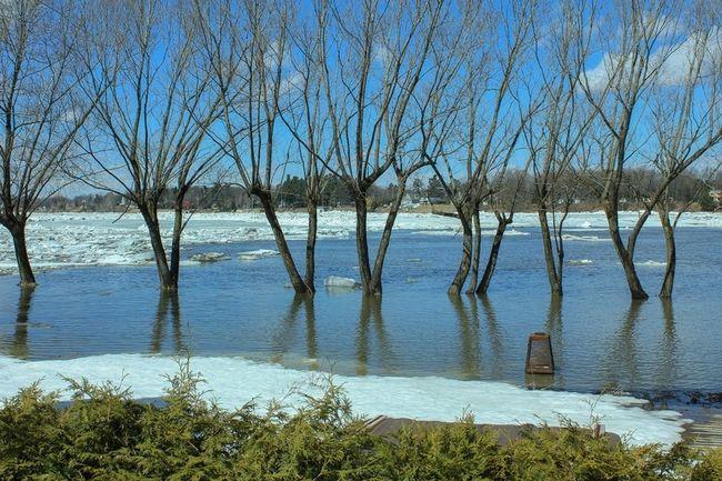 The Saint-Francois River floods near Drummondville, Sat., April 12, 2014. (MARIE-EVE PHANEUF/QMI Agency)