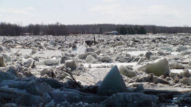Flood of 2014_9