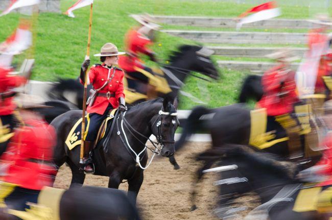RCMP musical ride   PHOTO GALLERY   Ottawa & Region   News   Ottawa Sun