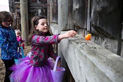 Brianna Lee, 9, left, and Emma Lee, 7, take part in an Easter egg hunt during Easter celebrations at Fort Edmonton Park in Edmonton, Alta., on Sunday, April 20, 2014. Codie McLachlan/Edmonton Sun/QMI Agency
