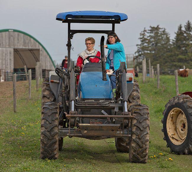 Liberal Leader Kathleen Wynne drives a tractor on a farm near Paris, Ont. (BRIAN THOMPSON, QMI AGENCY)