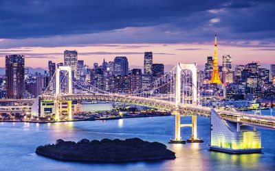 <b>TripAdvisor's 2014 Cities Survey - Top performing cities:</b> 1. Tokyo. (Fotolia)