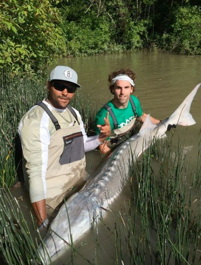 Jets land big fish simcoe reformer for Land big fish