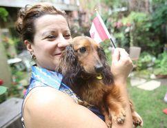 Denise Alexander — wife of Toronto Sun columnist Sue-Ann Levy — cuddles with Fritz. (JACK BOLAND, Toronto Sun)