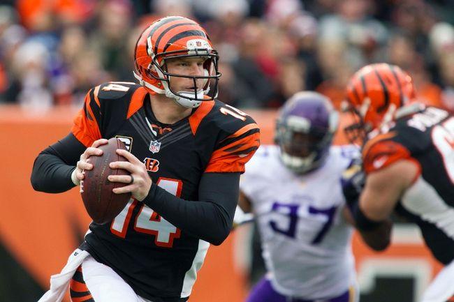 Cincinnati Bengals quarterback Andy Dalton (Trevor Ruszkowksi-USA TODAY Sports)