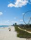 Myrtle Beach, South Carolina Deal