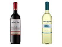 Two Oceans 2014 Sauvignon Blanc