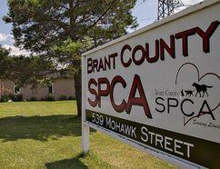 The Brant County SPCA building. BRIAN THOMPSON/BRANTFORD EXPOSITOR/QMI Agency
