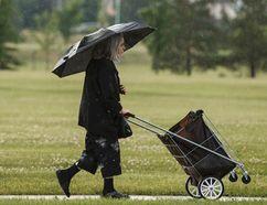 A woman with an umbrella, pushing a cart, walks past James Ramsay Park in Riverbend during a rainstorm in Edmonton, Alta., on Monday June 30, 2014. (Ian Kucerak/QMI Agency)