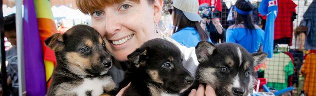 Katie Ayres AARCS puppies Pride Festival