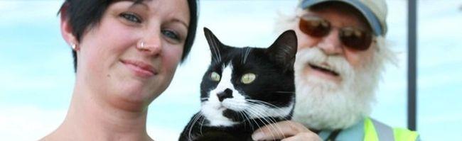 Kelly Graves Oreo Bruce Kaplar cat reunited with family
