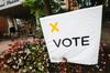 Vote.  REUTERS/Mark Blinch