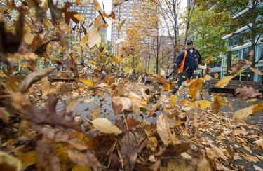 A Montréal city worker clears fallen leaves on Sunday Oct. 19, 2014. Joel Lemay/QMI Agency