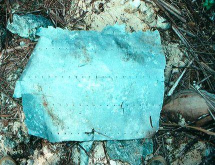 Amelia Earhart plane piece