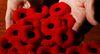 Poppies.  Luke Hendry/The Intelligencer/QMI Agency