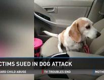 The Baker family's pet beagle, Bailey, was killed.