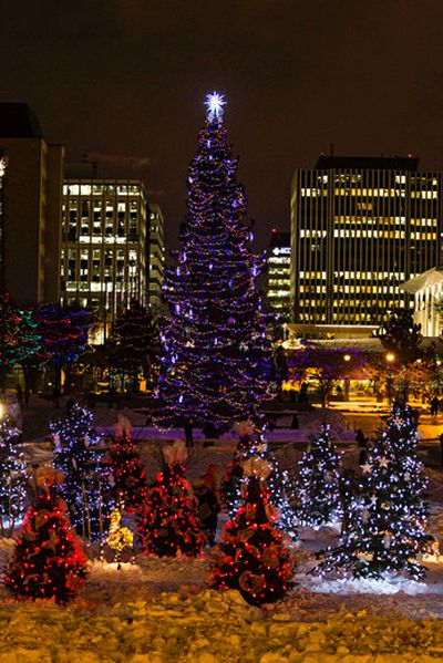Christmas lights are seen during the Alberta Legislature's Christmas light up event in Edmonton, Alta., on Thursday, Dec. 4, 2014. Codie McLachlan/Edmonton Sun/QMI Agency