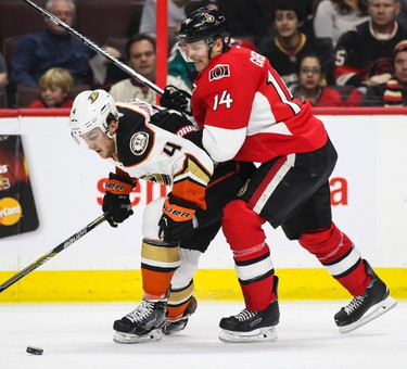 Ottawa Senators' Colin Greening battles with Anaheim Ducks' Cam Fowler during NHL hockey action at the Canadian Tire Centre in Ottawa, Ontario on Friday December 19, 2014. Errol McGihon/Ottawa Sun/QMI Agency