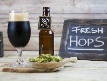 Beer predictions