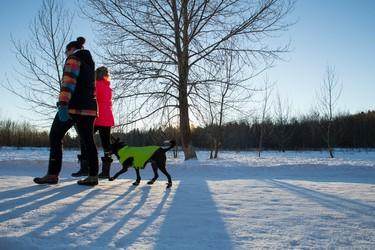 Two women walk a dog at Buena Vista Park in Edmonton, Alta., on Tuesday, Jan. 20, 2015. Mild weather saw lots of visitors to area parks throughout the day. Ian Kucerak/Edmonton Sun/ QMI Agency