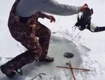 Ice fishing bird