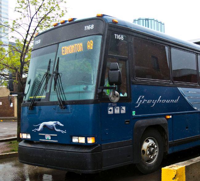 File photo of Greyhound bus
