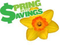 PROMO: Thrifty Spring 2015
