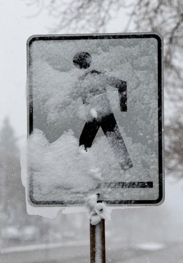 Winter blast no April Fool's joke. Wet freezing snow was sticking to everything including pedestrian crossing signs in Edmonton on Tuesday April 1, 2015. Tom Braid/Edmonton Sun/ QMI Agency