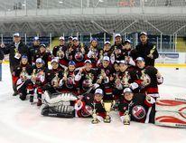 Brantford Minor Hockey Association's minor peewee 99ers celebrate their Minor Hockey Alliance of Ontario championship. (Submitted Photo)