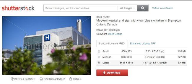 Shutterstock photo