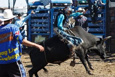 Riley Tallis rides in the mini bulls event during Bulls For Breakfast at Big Valley Jamboree 2015 in Camrose, Alta. on Friday July 31, 2015. Ian Kucerak/Edmonton Sun/Postmedia Network