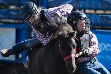 The Martin Deerline team competes in the wild pony race during Bulls For Breakfast at Big Valley Jamboree 2015 in Camrose, Alta. on Friday July 31, 2015. Ian Kucerak/Edmonton Sun/Postmedia Network