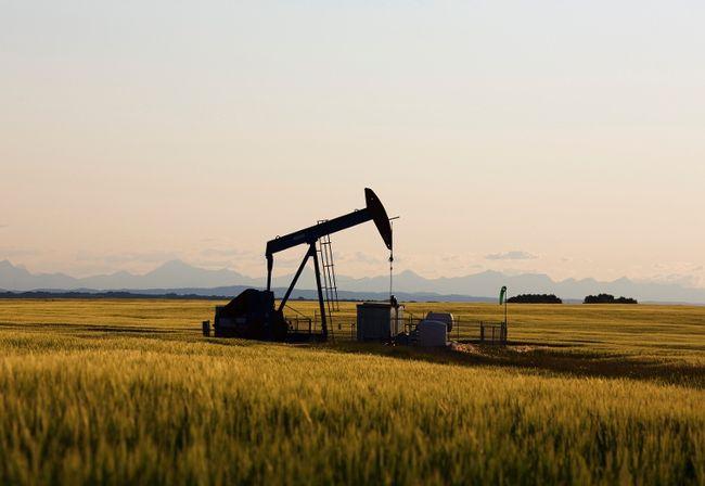 An oil pump jack