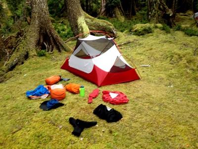 A tent set up on a mossy rainforest campsite during an August 2015 kayaking tour in Gwaii Haanas National Park Reserve on B.C.'s Haida Gwaii. Tony Blais/Edmonton Sun/Postmedia Network