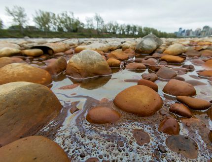 West Village river creosote contamination