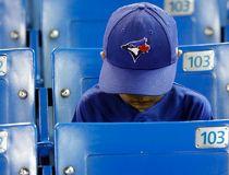 Blue Jays fan